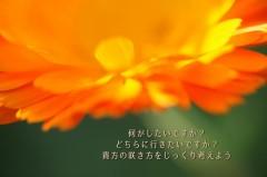 IMG_6057-n-1500